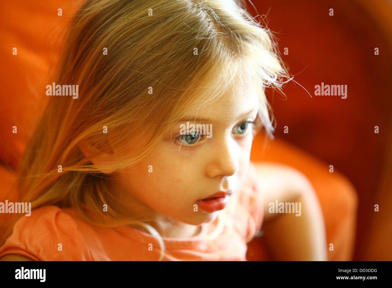 Young girl of 4 engrossed in a TV show Model release available - Stock Image