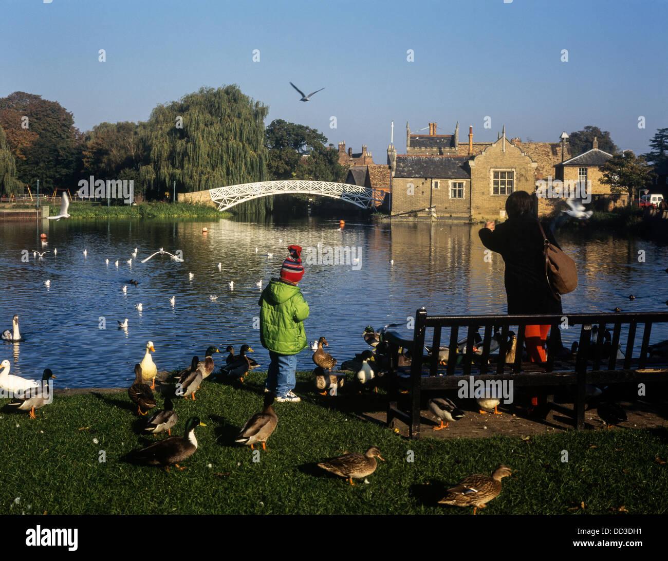 Feeding the birds by the Chinese Bridge, Godmanchester, Huntingdonshire, Cambridgeshire - Stock Image