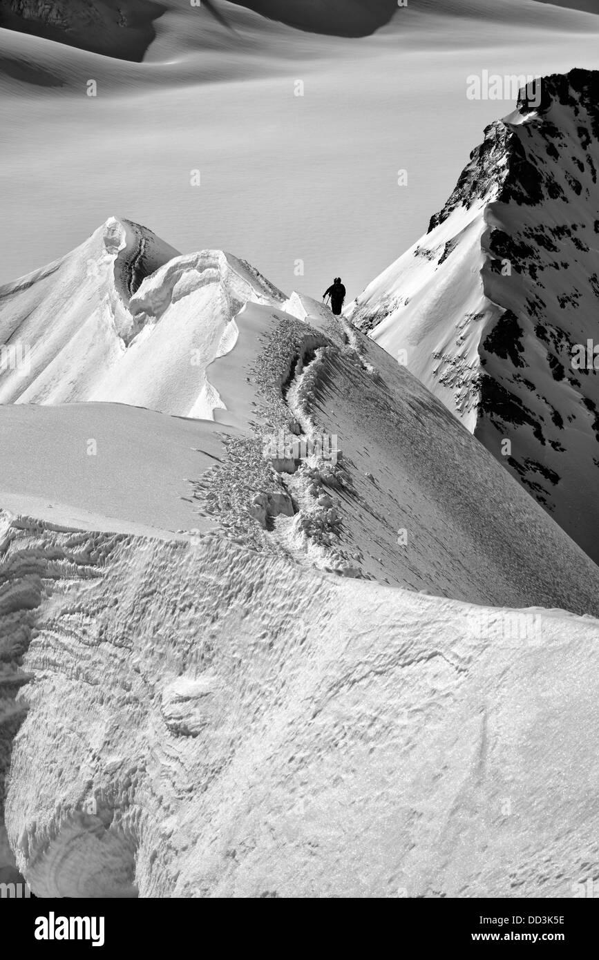 Alpine climbers on the Monch Stock Photo