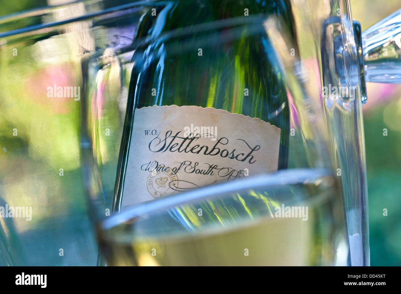 Closeup wine glass with Stellenbosch South Africa wine bottle and cooler behind in sunny alfresco garden situation - Stock Image