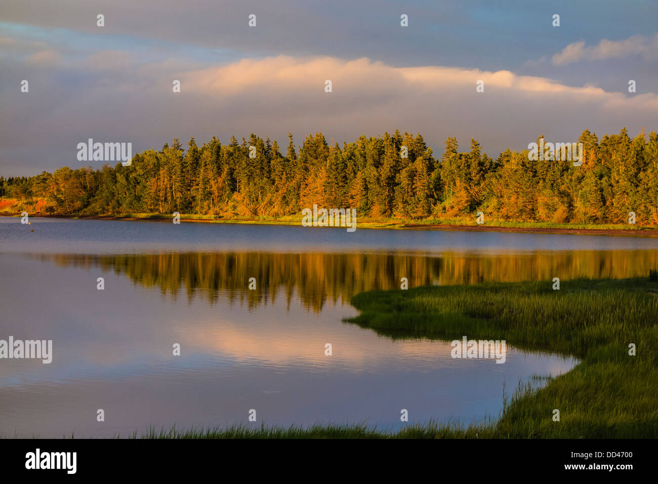 Colorful sunset with reflection of evergreen trees in the Southwest River on Prince Edward Island, Canada. - Stock Image