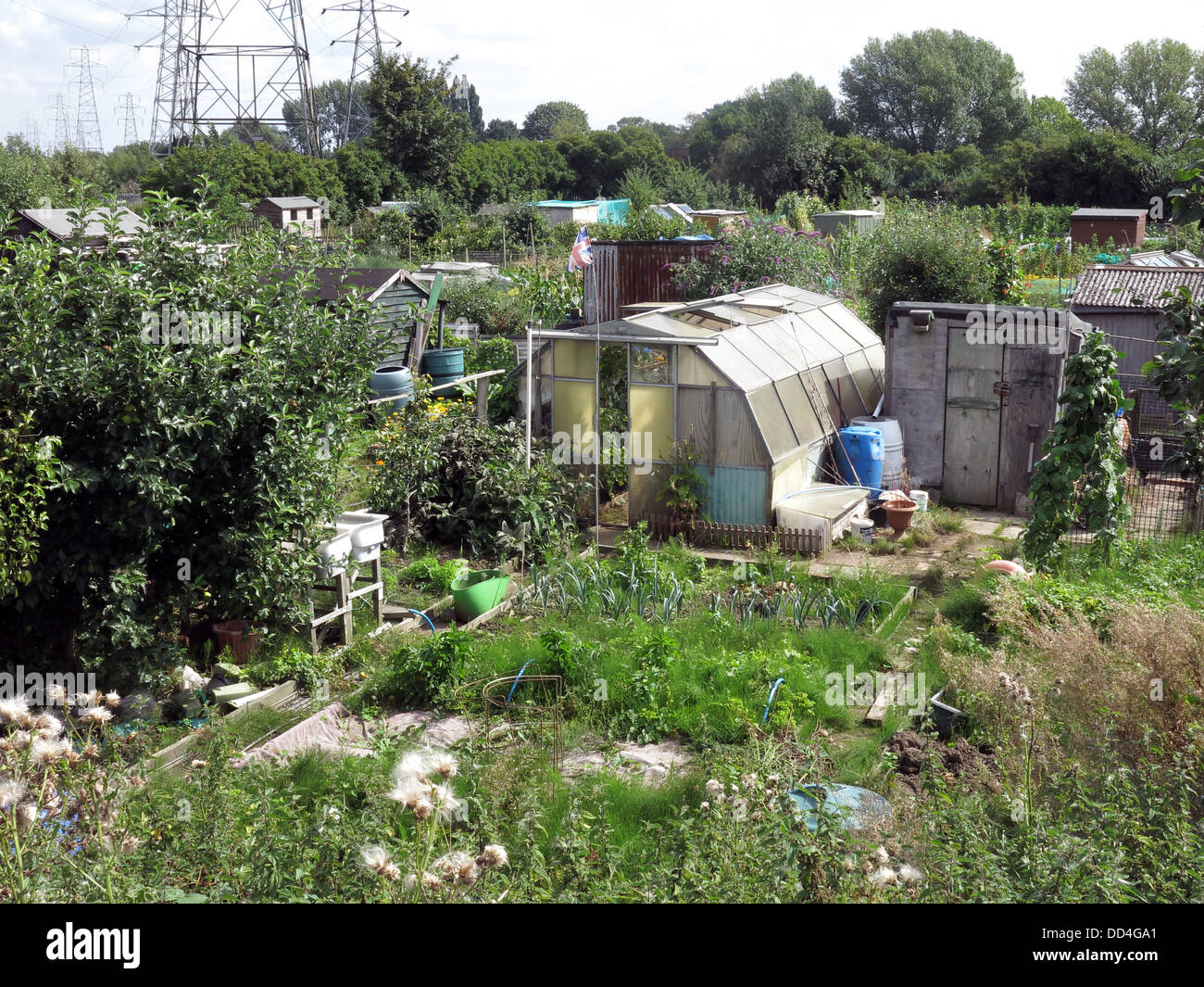 Westy allotments, Kingsway South, Latchford / Westy, Warrington, Cheshire, North West England - Stock Image