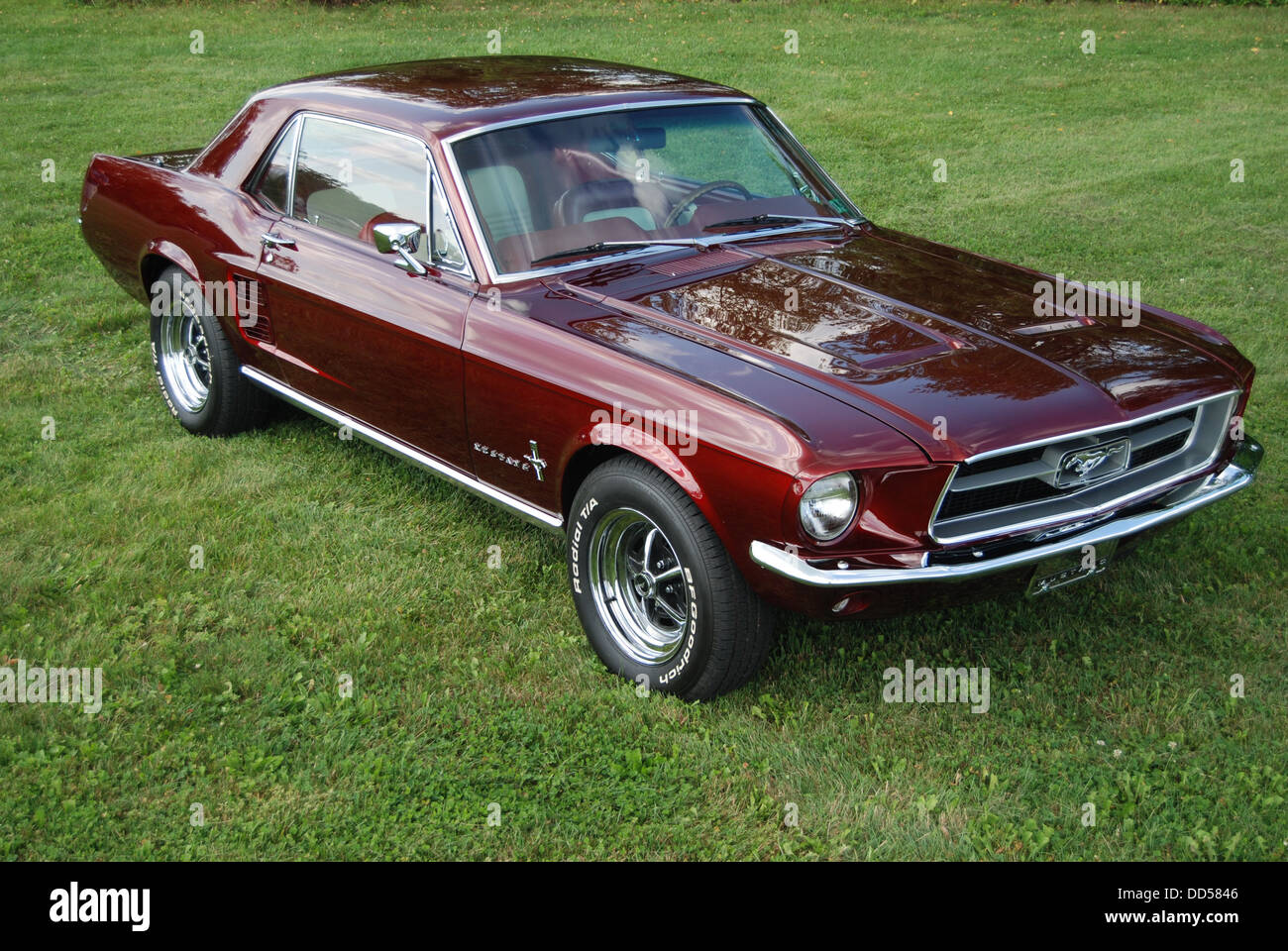 1967 Ford Mustang Stock Photos & 1967 Ford Mustang Stock Images - Alamy