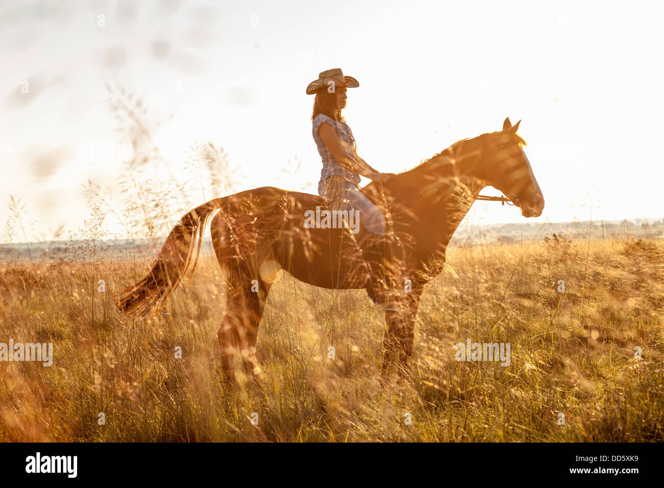 Croatia, Dalmatia, Young woman horseback riding - Stock Image