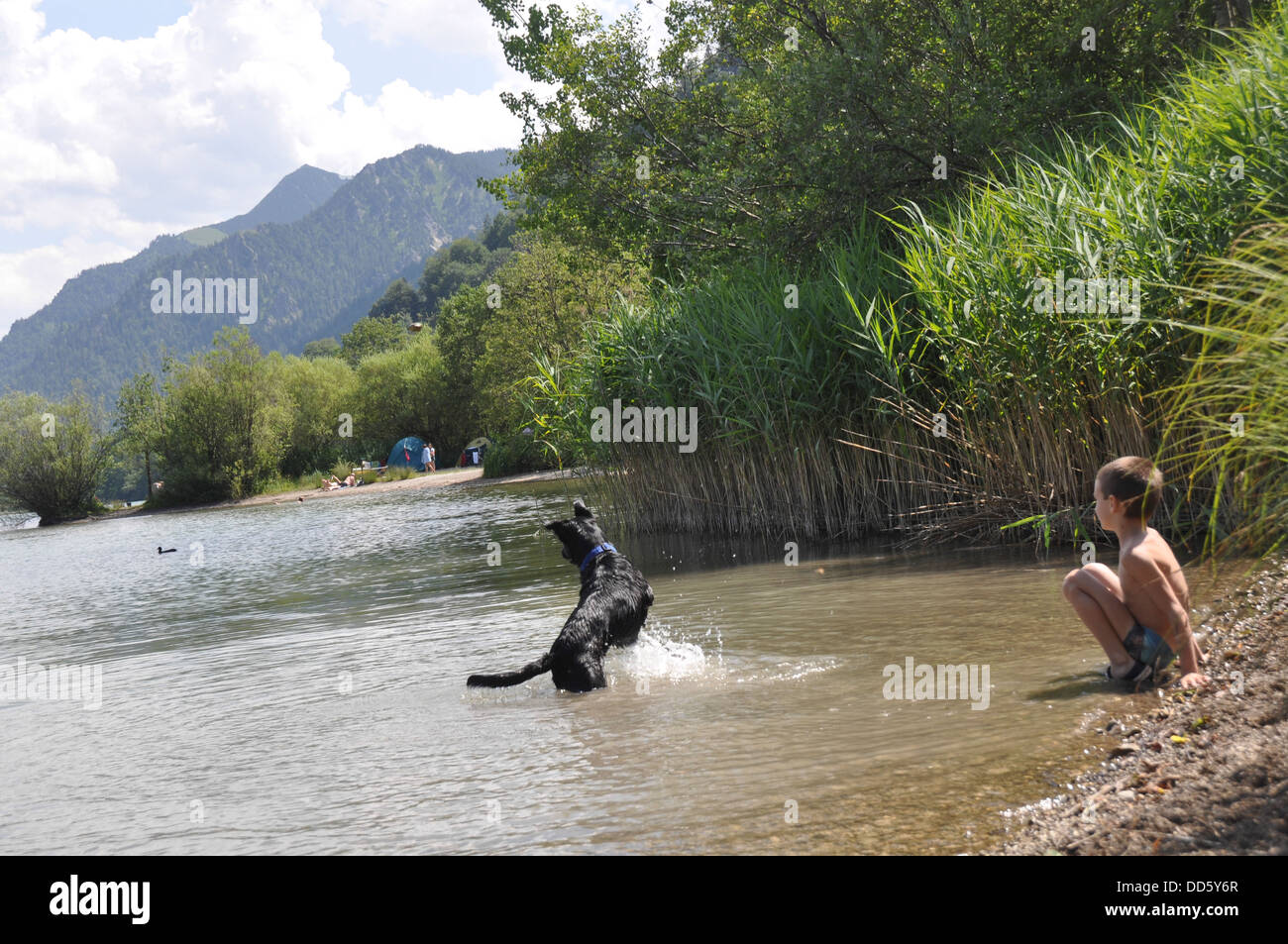 Schliersee, Upper Bavaria, Germany. A boy and his pet dog in the water Stock Photo