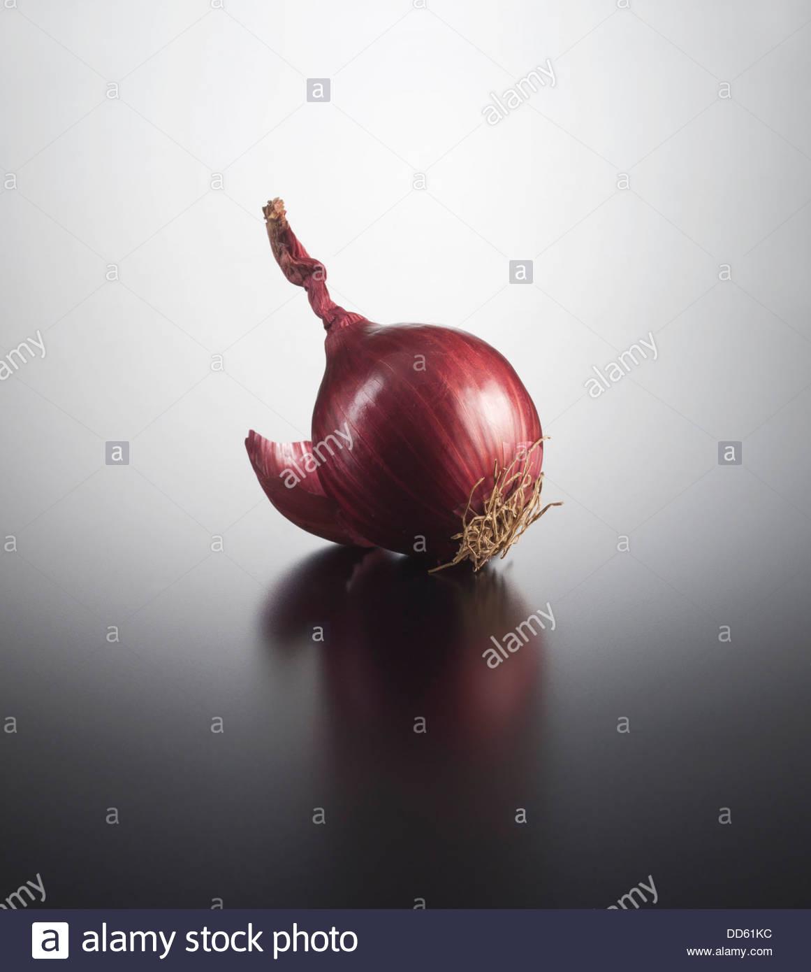 Onion on coloured background, close up - Stock Image