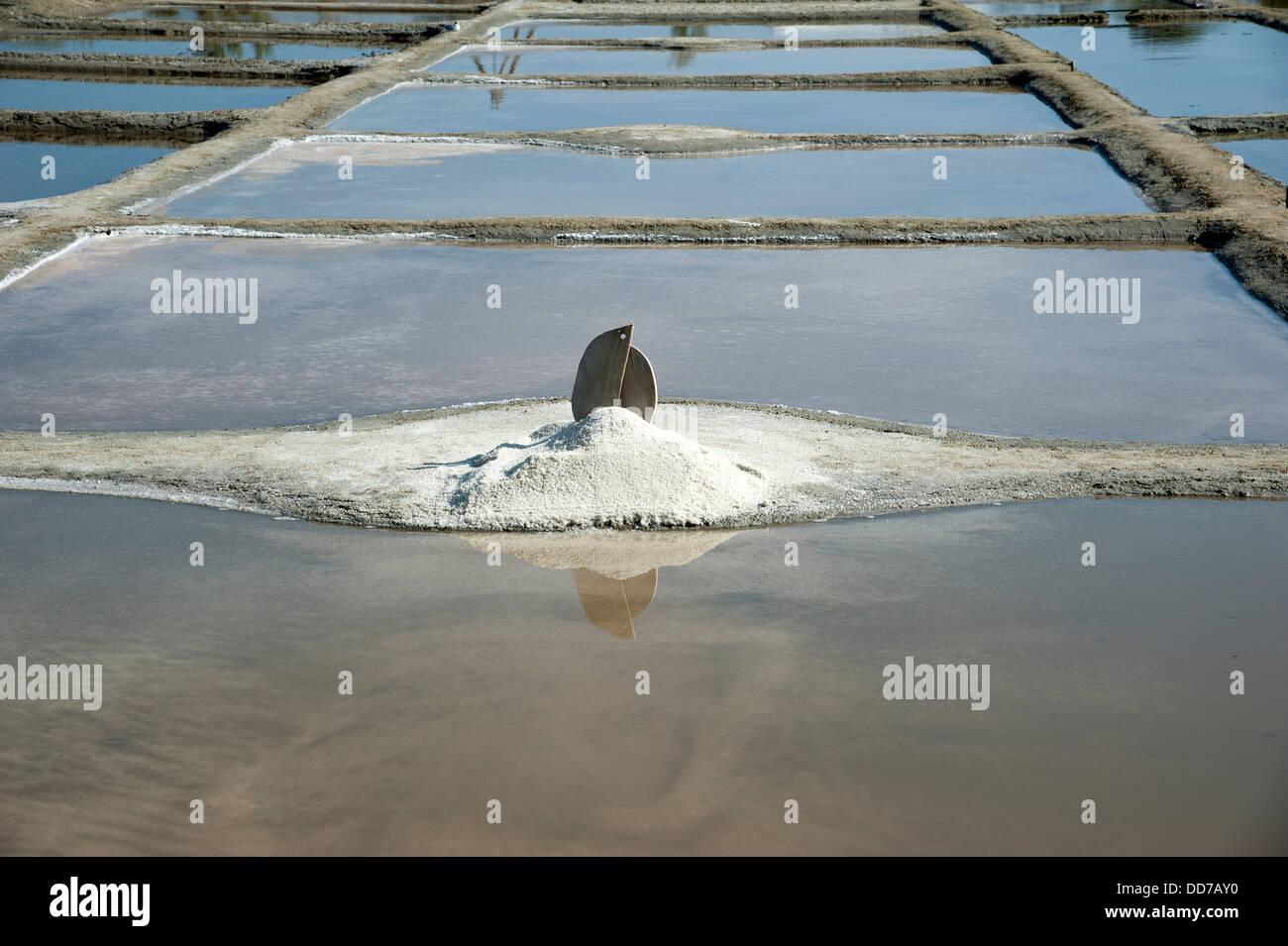 Farming for salt at Les Sables D' Olonne western France - Stock Image