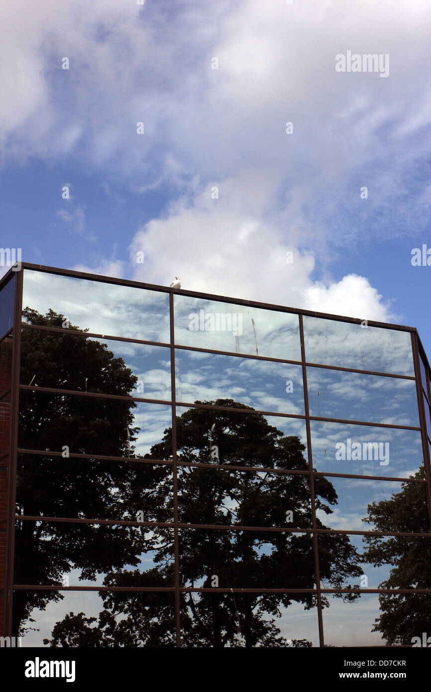 reflected cloud formation in window panes - Stock Image