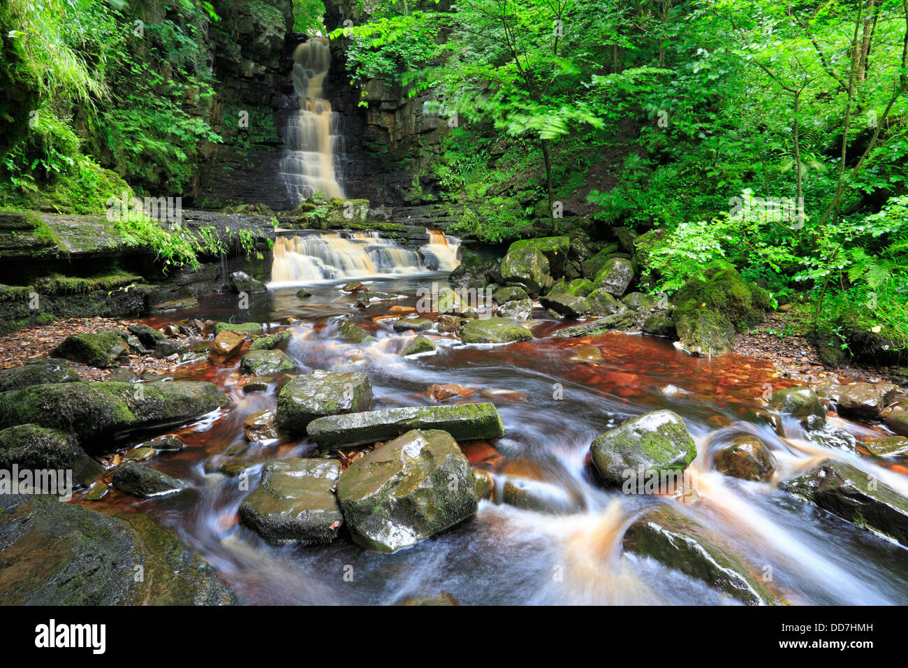 Mill Gill Force near Askrigg in Wensleydale, North Yorkshire, Yorkshire Dales National Park, England, UK. Stock Photo