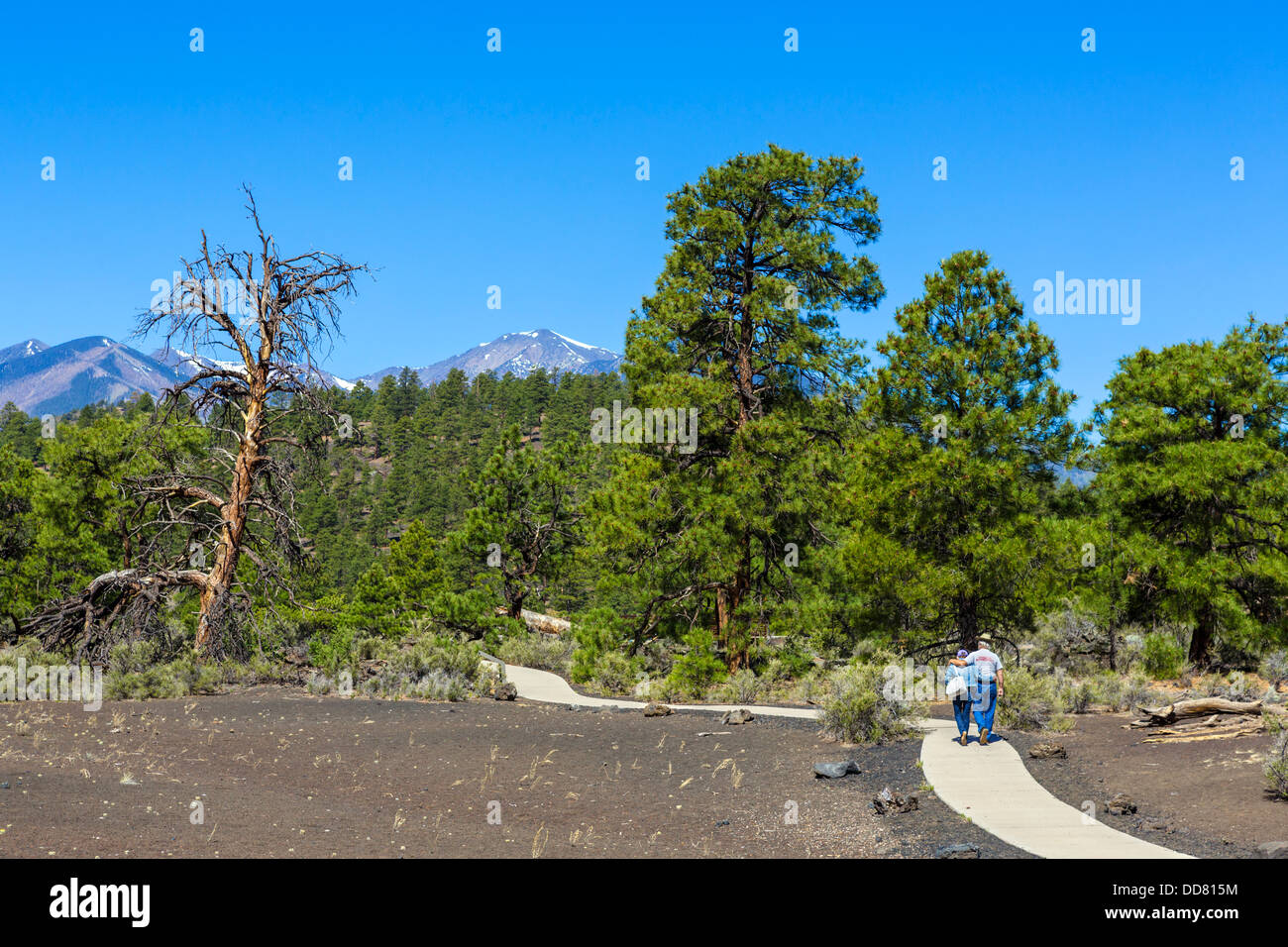 Elderly couple on the Lava Flow Trail at Sunset Crater Volcano National Monument, near Flagstaff, Arizona, USA - Stock Image
