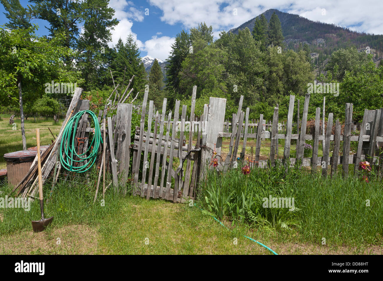 USA, Washington, Stehekin. Organic garden on Buckner Orchard and Homestead. - Stock Image