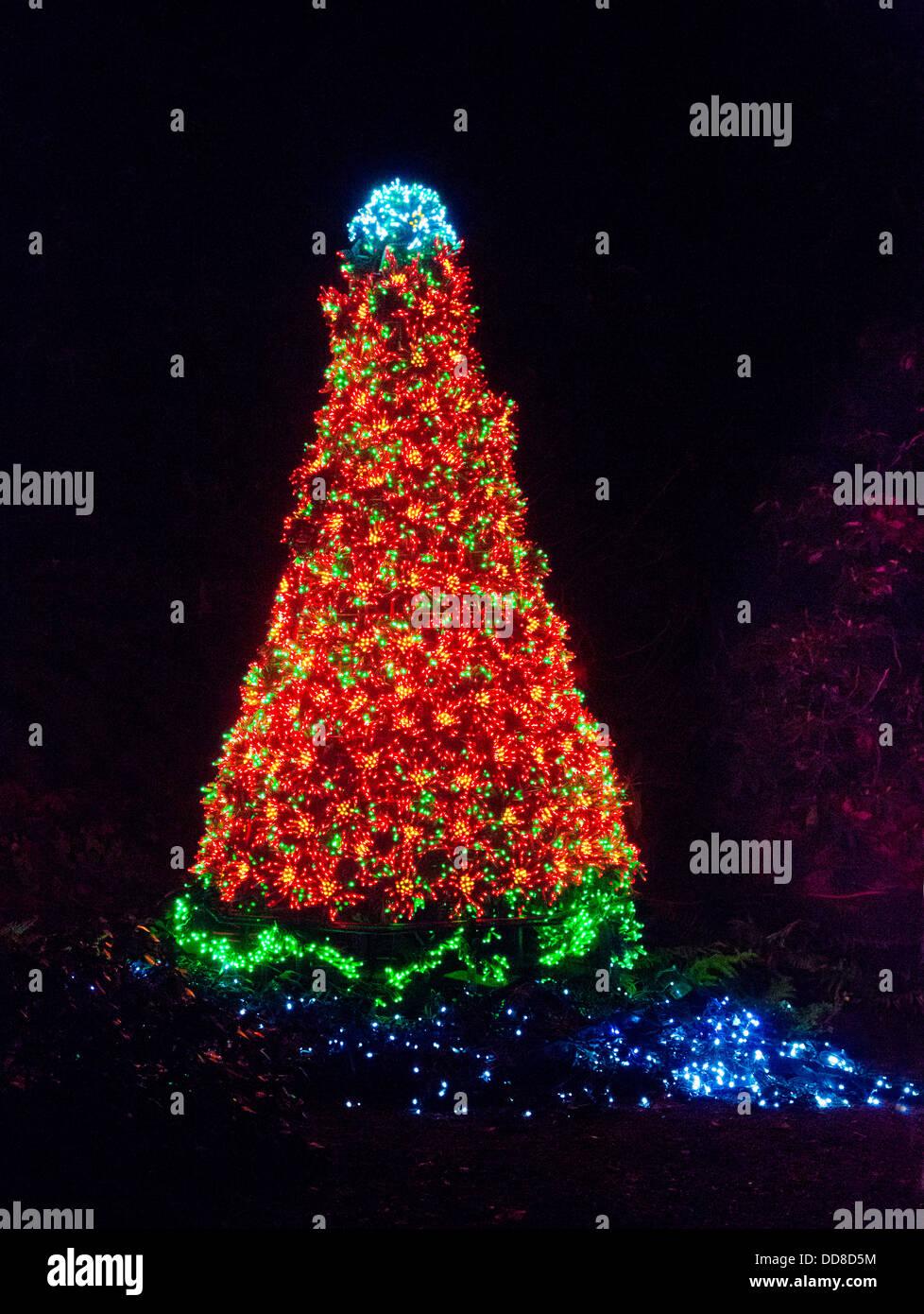 usa washington bellevue a christmas tree of lights at the garden d - Bellevue Christmas Lights