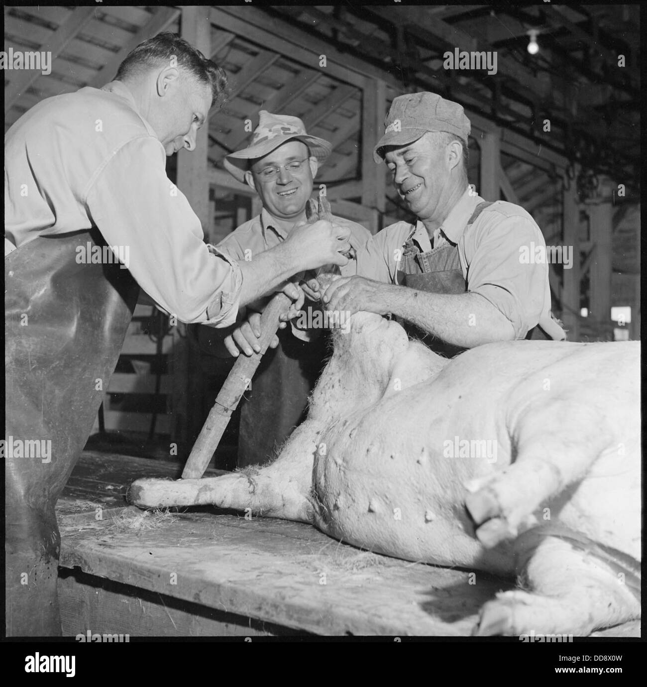 Granada Relocation Center, Amache, Colorado. Slaughter house at the project farm. A total of near . . . - - 539954 - Stock Image