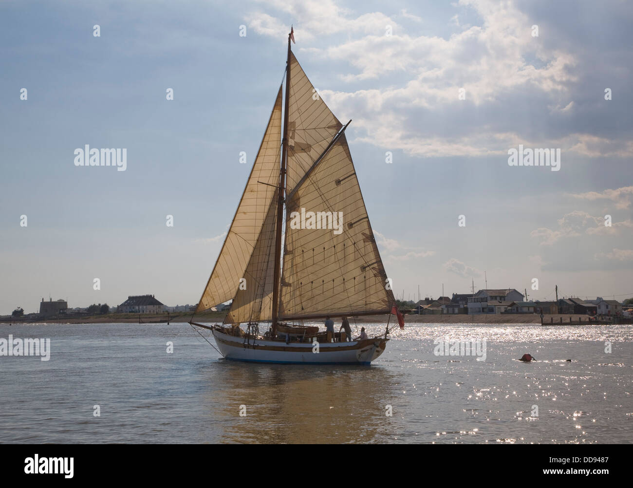 Historic wooden sailing yacht boat full sail River Deben mouth Bawdsey Quay Suffolk England - Stock Image