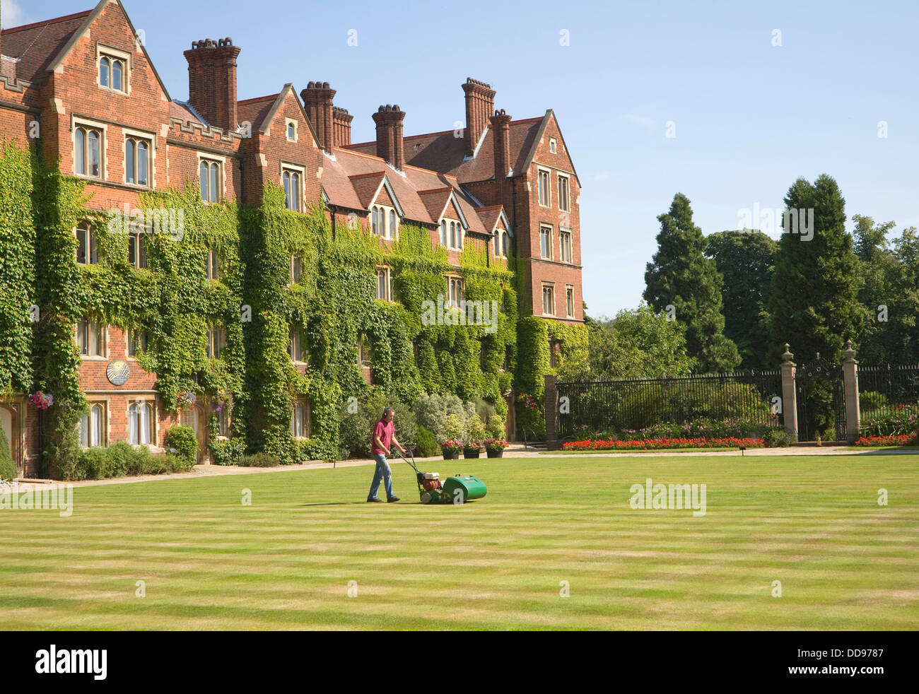 Man mowing lawn Old Court Selwyn College University of Cambridge England - Stock Image