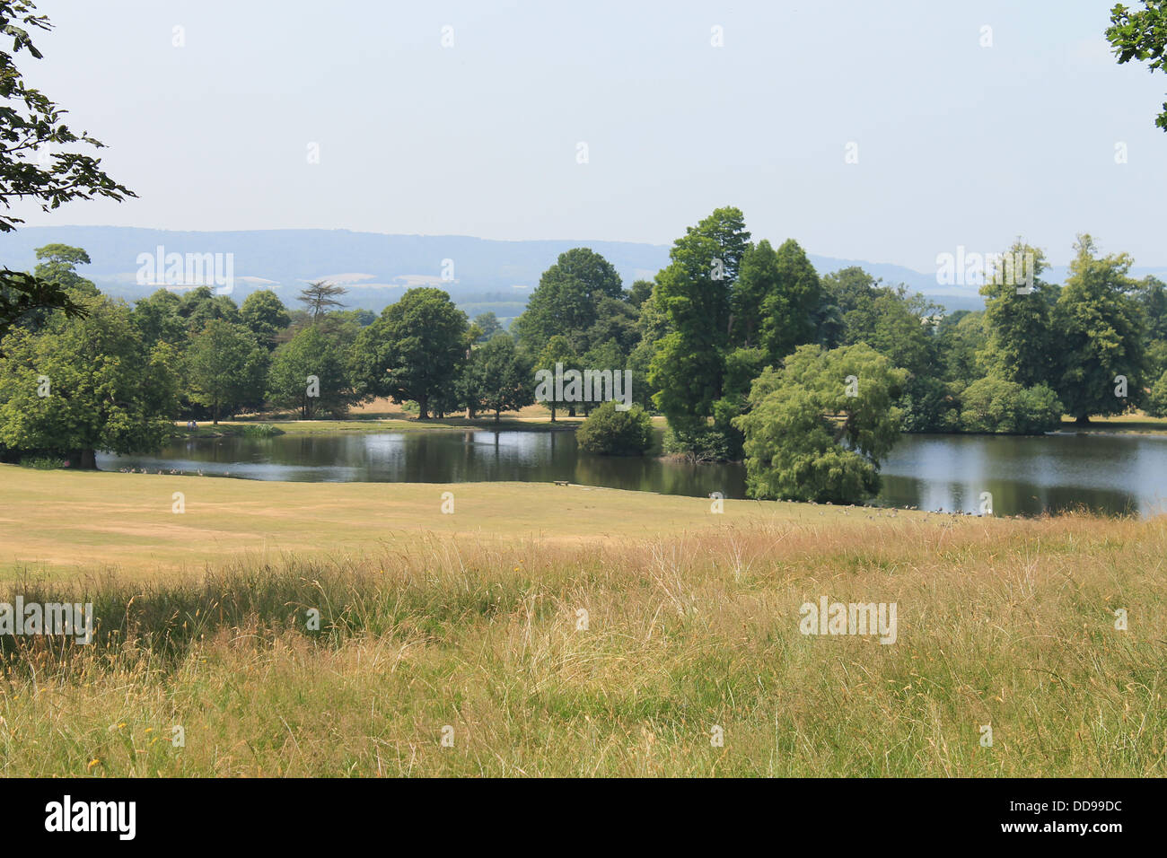 The lake in the grounds of Petworth Park, West Sussex, UK - Stock Image