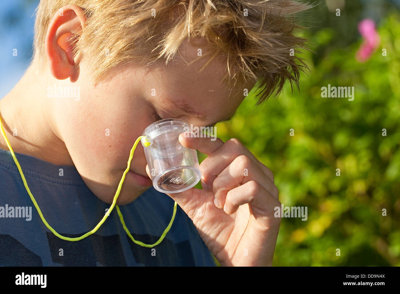 Child, loupe, magnifier, Junge, Kind beobachtet Insekt in Becherlupenglas, Becherlupe, Lupe Stock Photo