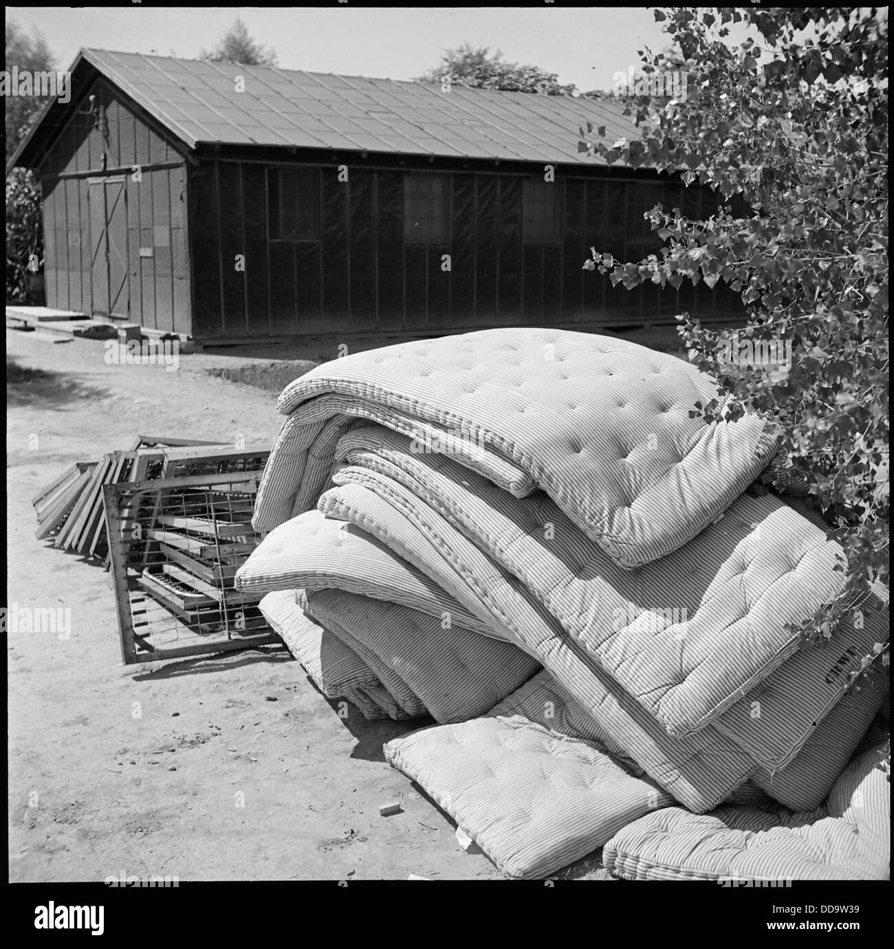 Poston, Arizona. Mattresses no longer needed by block residents are piled in the middle of the bloc . . . - - 539867 - Stock Image