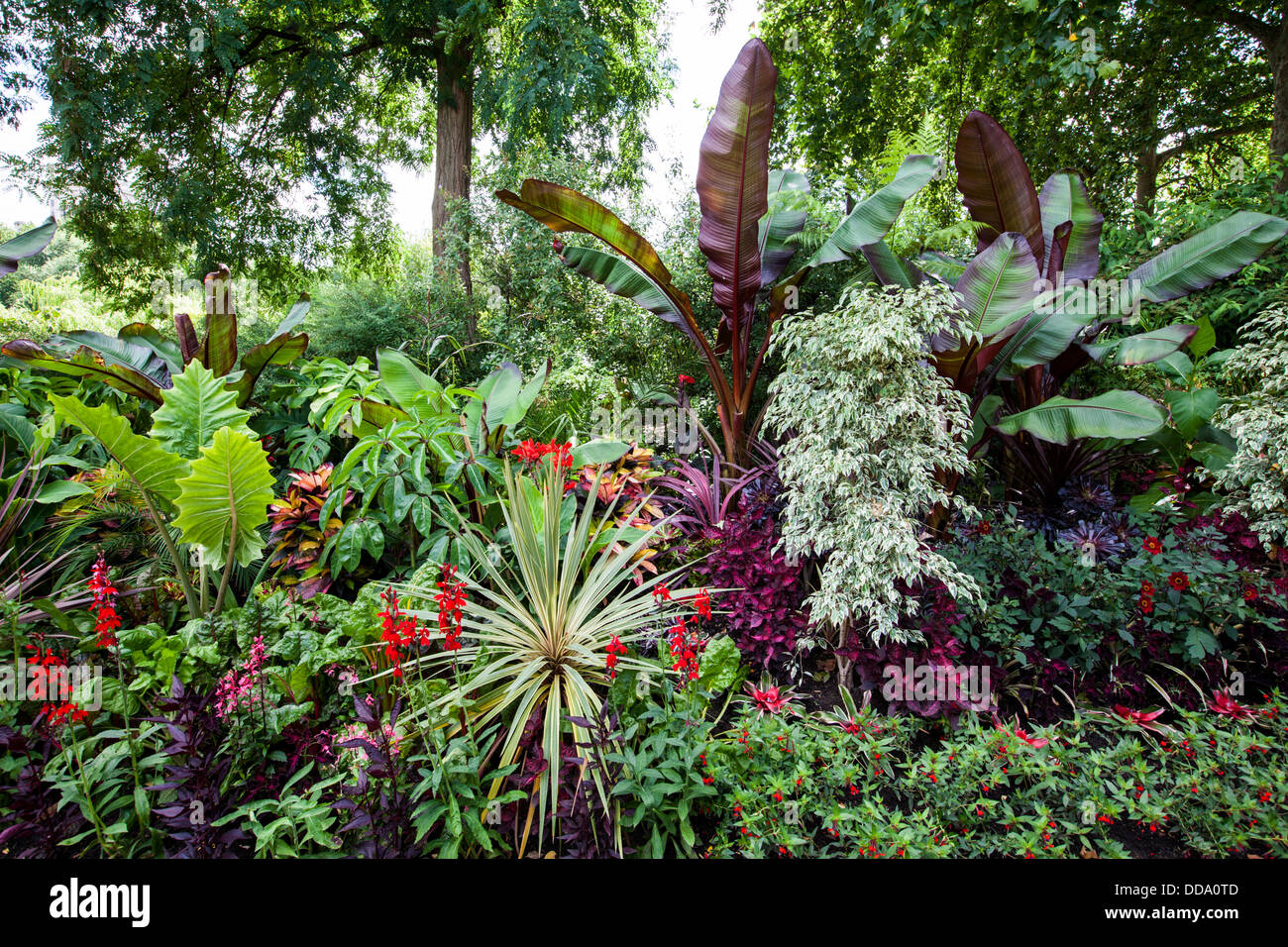 The Tropical Gardens of St James's Park, London Stock Photo