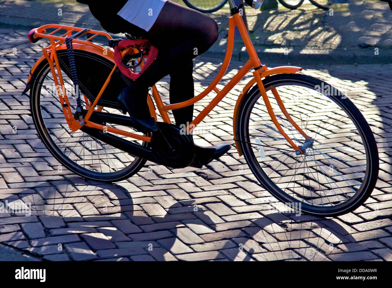 Cyclist, Amsterdam, Netherlands, Europe - Stock Image