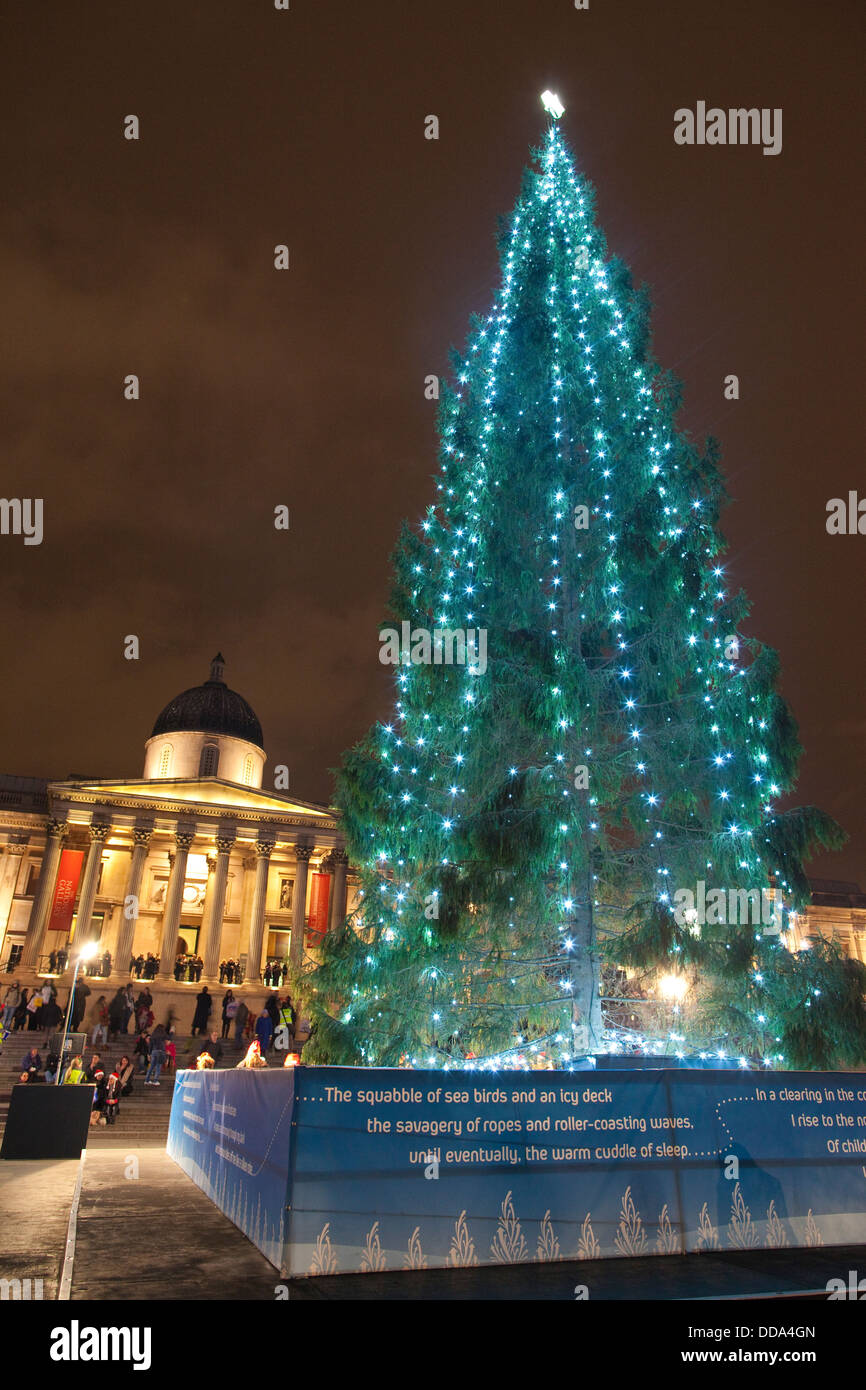Londons Christmas Tree In Trafalgar Square Is Donated Each Year By Which Country.Trafalgar Square Christmas Tree Typically A 50 60 Year Old