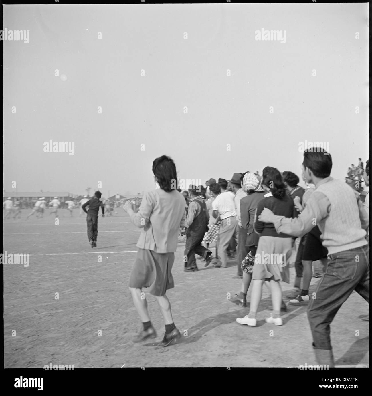 Rohwer Relocation Center, McGehee, Arkansas. The crowd breaks the line during a tense moment of a f . . . - - 538921 - Stock Image