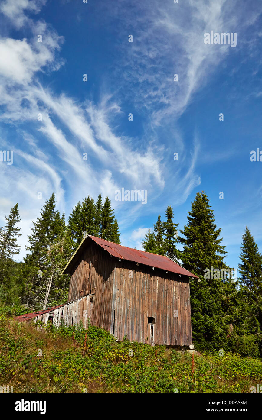 Wooden barn Norway with fir trees and cirrus cloud - Stock Image
