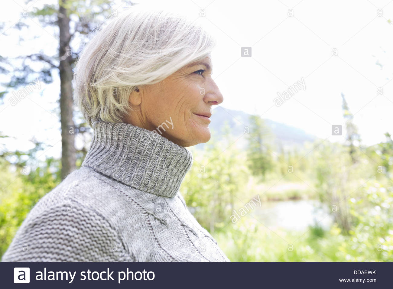 Profile shot of mature woman in forest - Stock Image