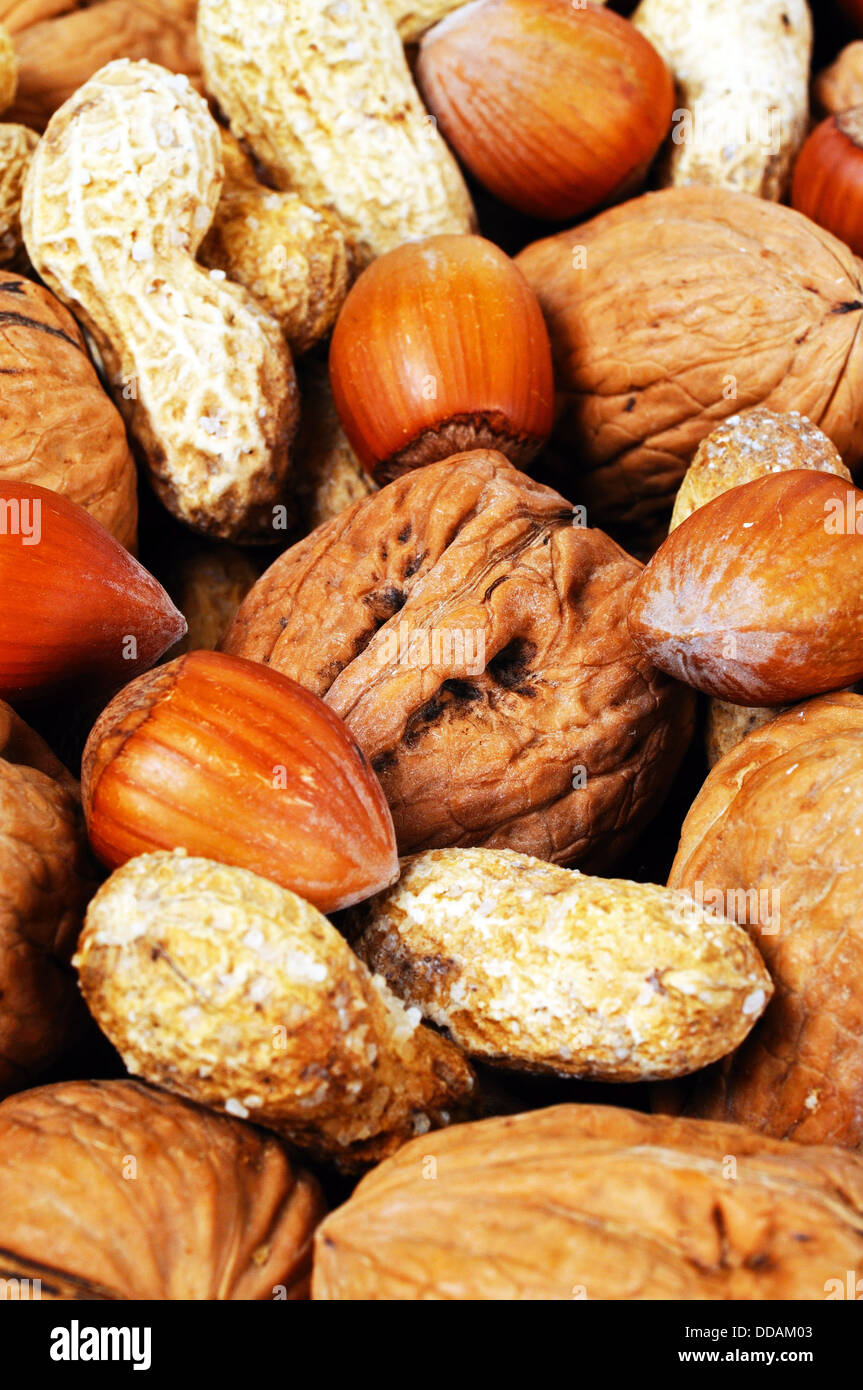 Mixed nuts in their shells (Monkey nuts, Walnuts and Hazelnuts). Stock Photo