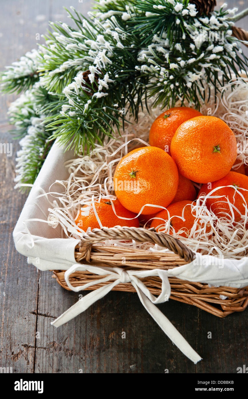 Mandarins in basket with Christmas tree branch - Stock Image