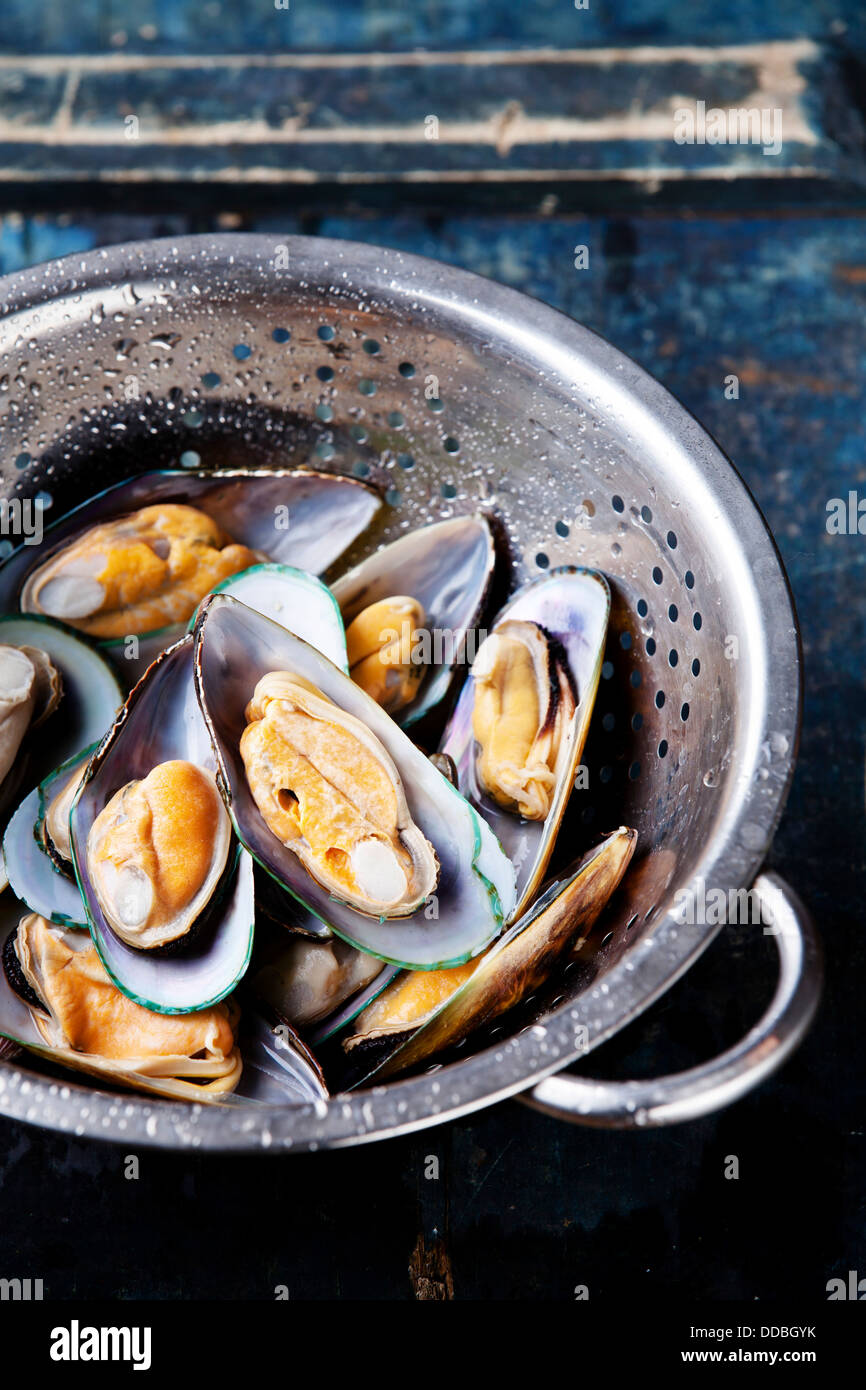 Raw washed mussels in colander - Stock Image