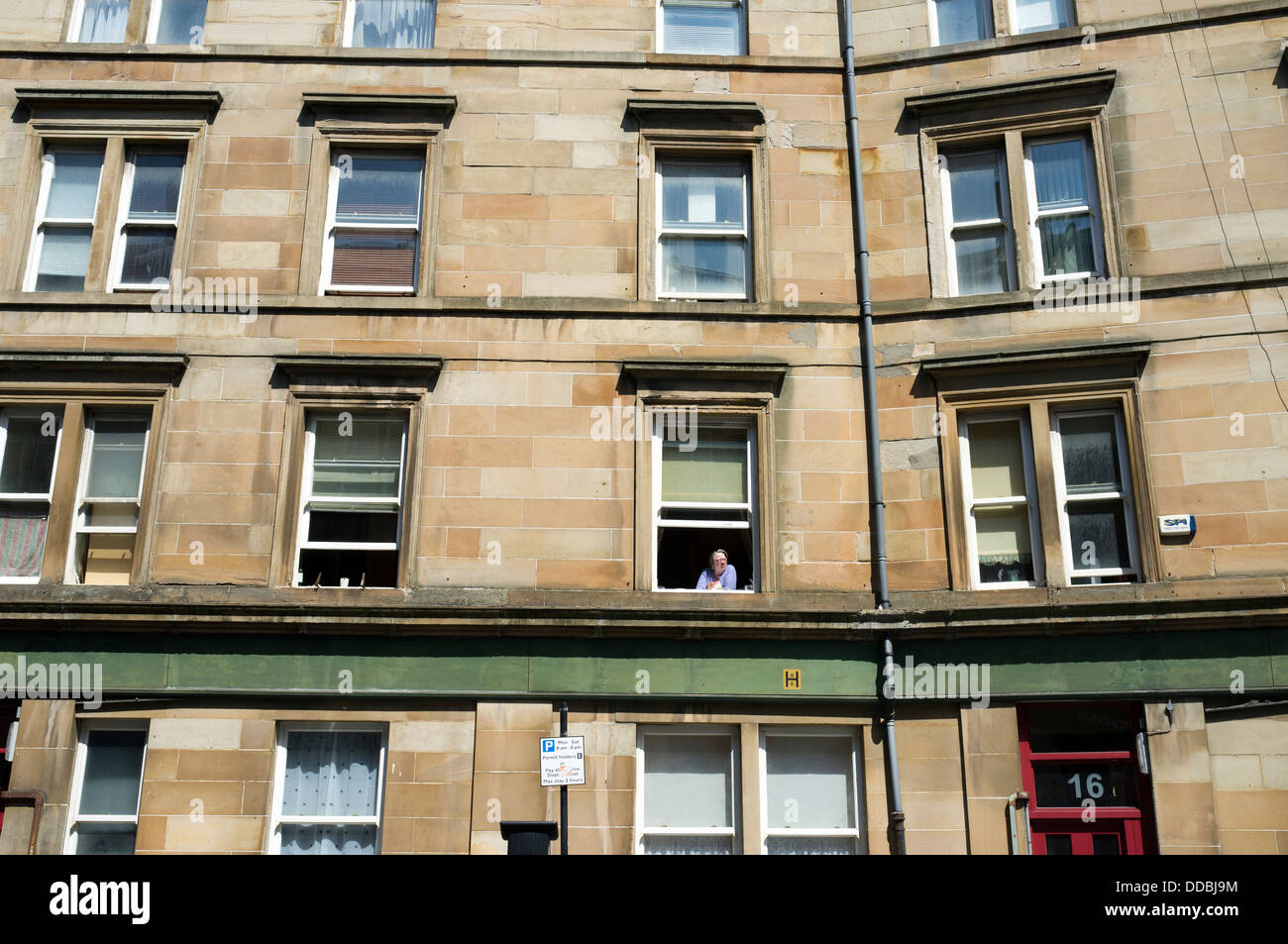 Woman looking out of a Tenement window Glasgow City Centre Scotland UK - Stock Image