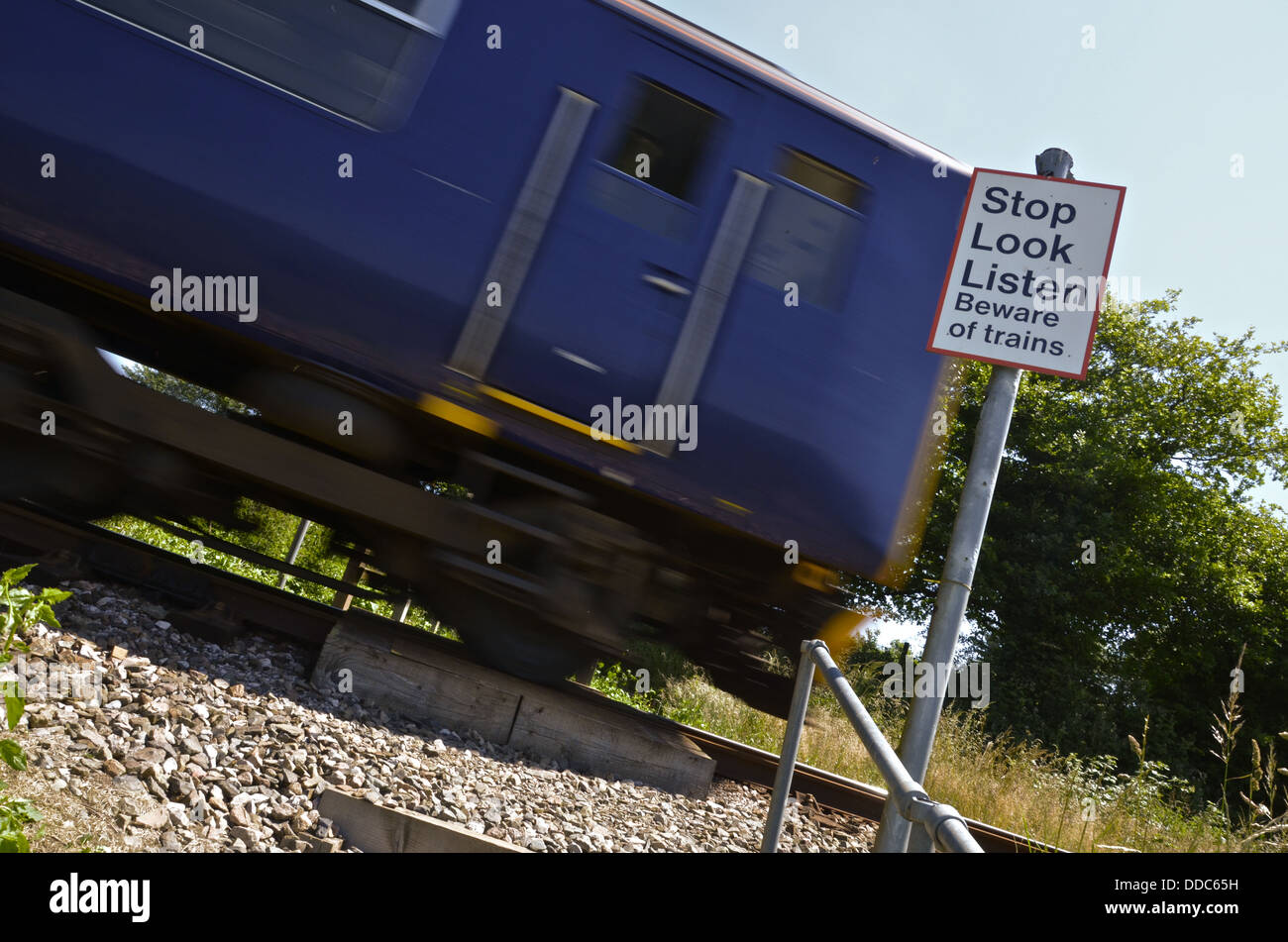 DMU Speeds over foot crossing on the famous Tamar Valley  Branch Line. Pictured here near Bere Alston Devonshire - Stock Image