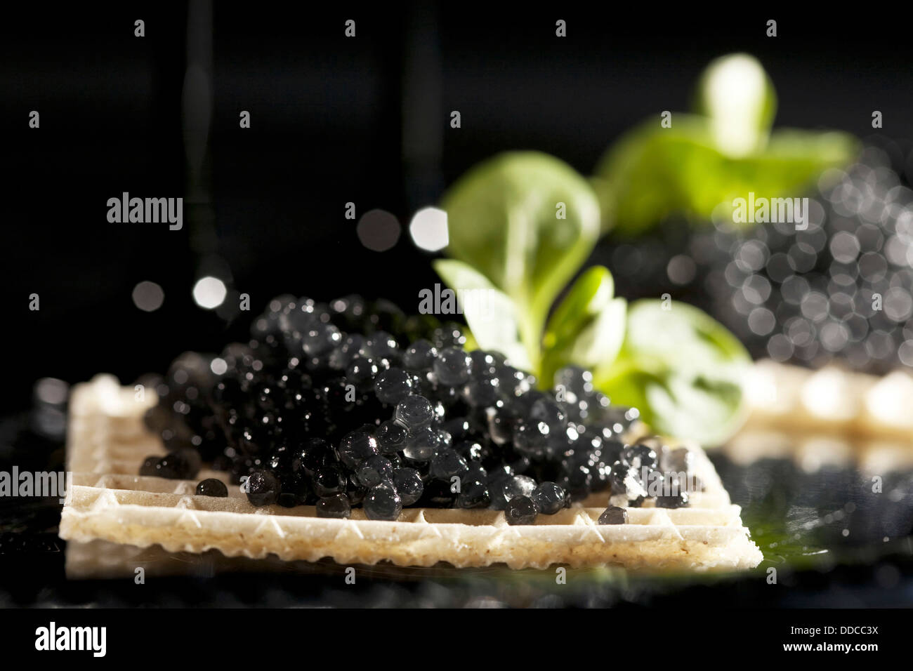 Sandwiches with black caviar on black background - Stock Image