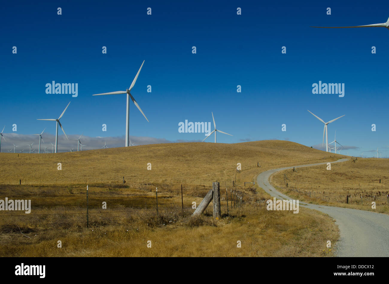 SMUD wind farm in the Montezuma Hills near Rio Vista California.  Each tower is 415 ft tall and generates 3 MW. - Stock Image