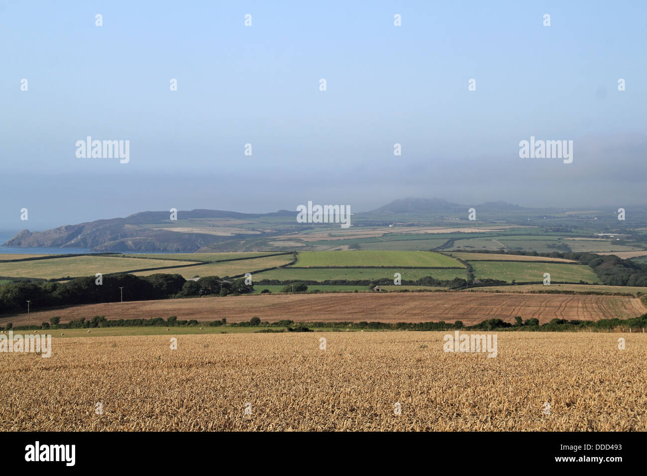 The Pen Caer peninsula from Mathry, Pembrokeshire, Wales, Great Britain, United Kingdom, UK, Europe - Stock Image