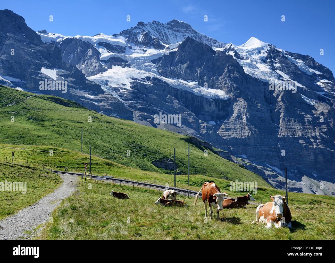 Kleine Scheidegg, mountain pass between Eiger and Lauberhorn peaks in the Bernese Oberland, Switzerland, Europe - Stock Image