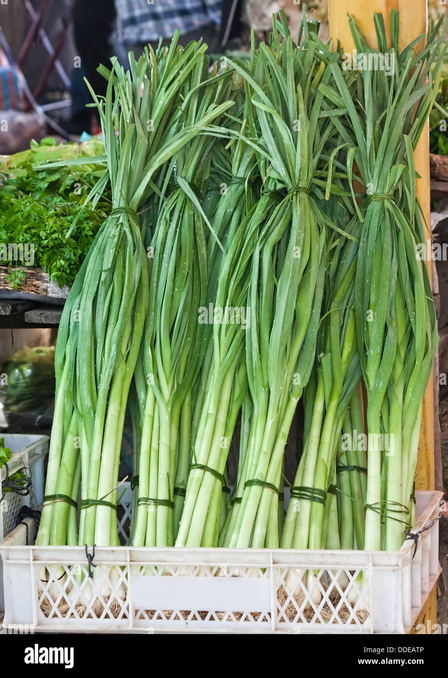 Fresh Organic Leek, At A Street Market In Canakkale, Turkey. - Stock Image
