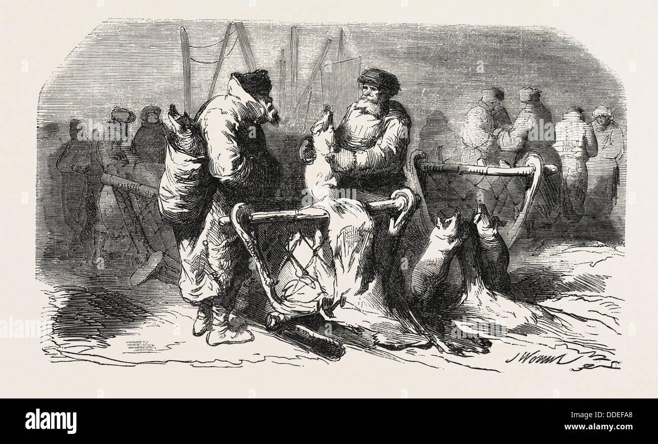 Pigs Dealers Petersburg. According to the sketch of M. de Henriet. 1855. Engraving - Stock Image