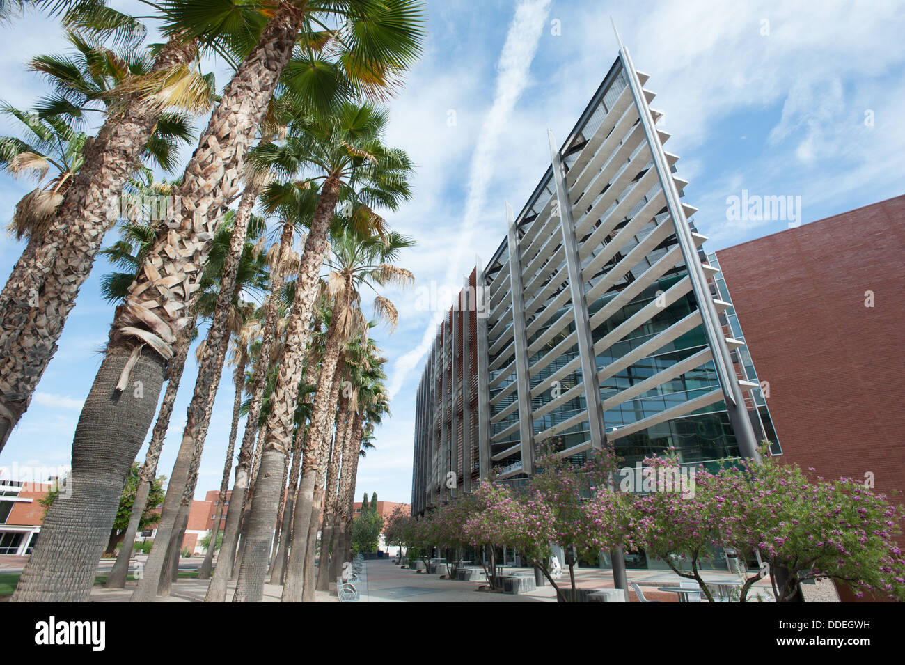 University of Arizona Campus buildings Stock Photo: 59942221 - Alamy