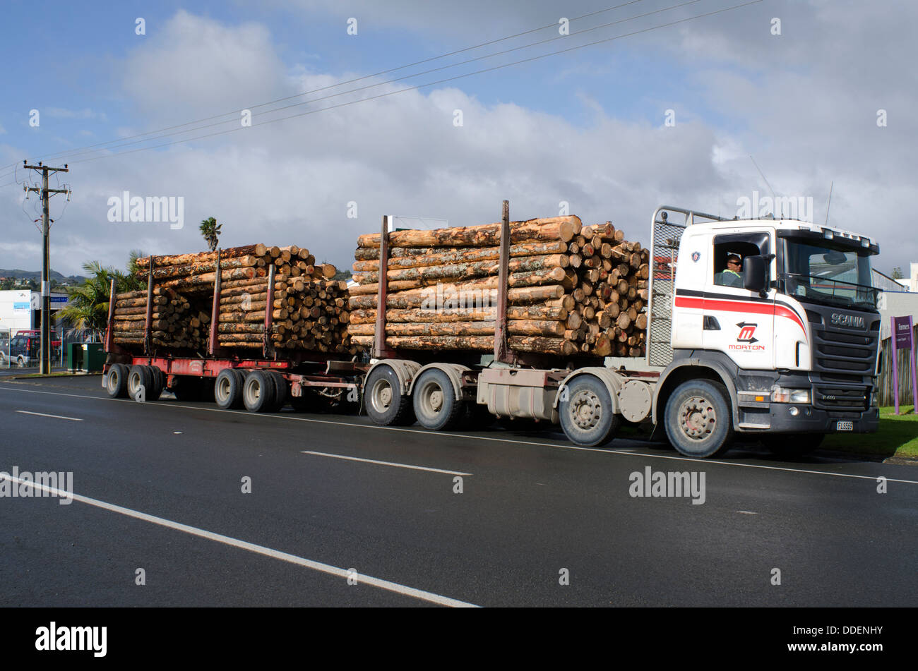 Stacked wooden logs, tree trunks on a logging truck in Kaitaia Northland New Zealand NZ NZL Stock Photo