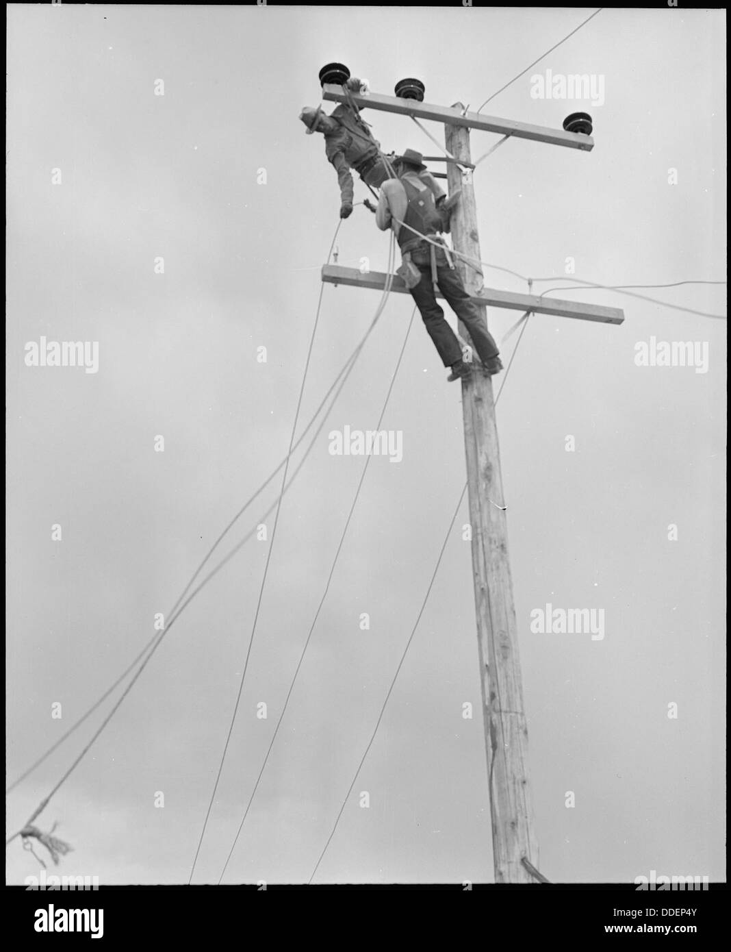 Poston, Arizona. Light poles and wiring for electric lighting are ...