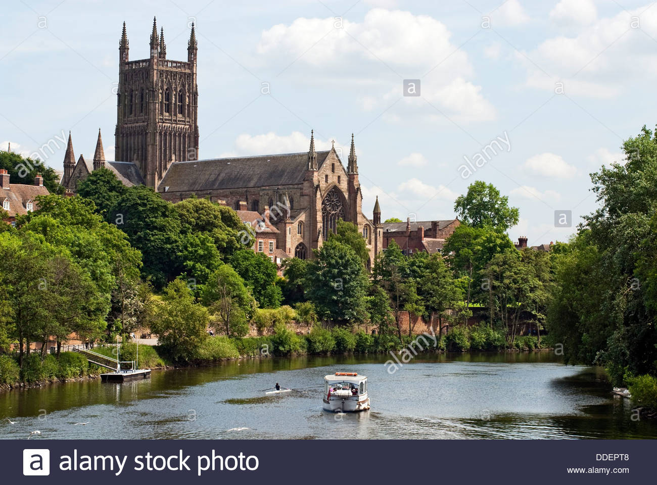 Worcester Cathedral is an Anglican cathedral in Worcester, England; situated on a bank overlooking the River Severn. - Stock Image