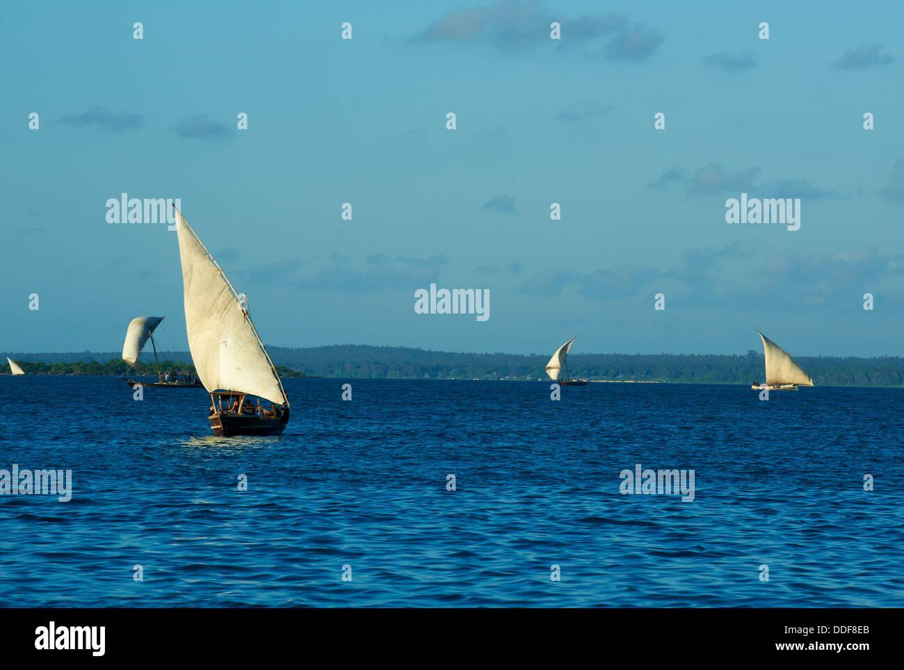 Tanzania, Zanzibar island, Unguja - Stock Image