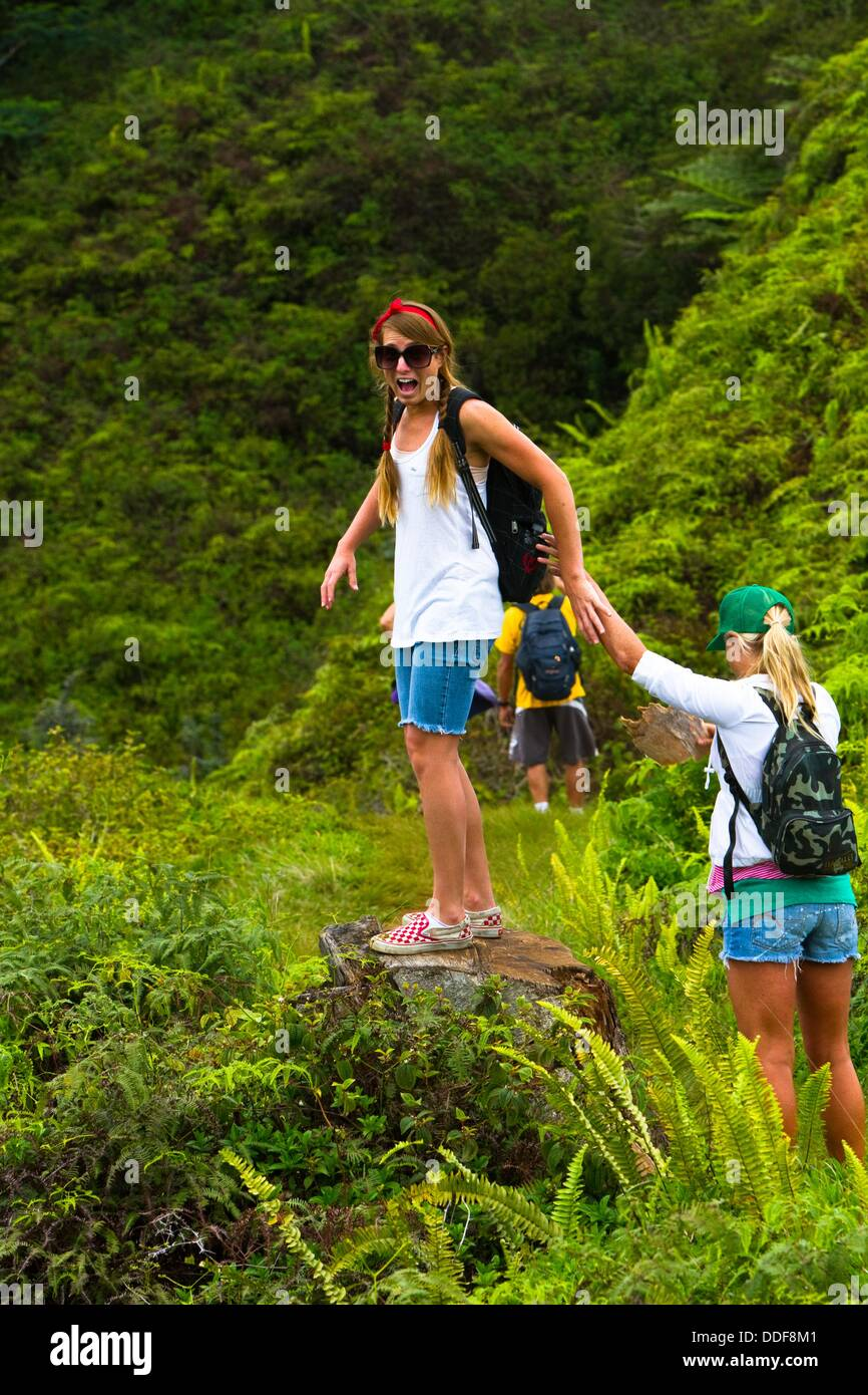 The Kuilau and Moalepe trail begin near Wailua´s Keahua Arboretum and travels up to views of Mt. Waialeale - Stock Image