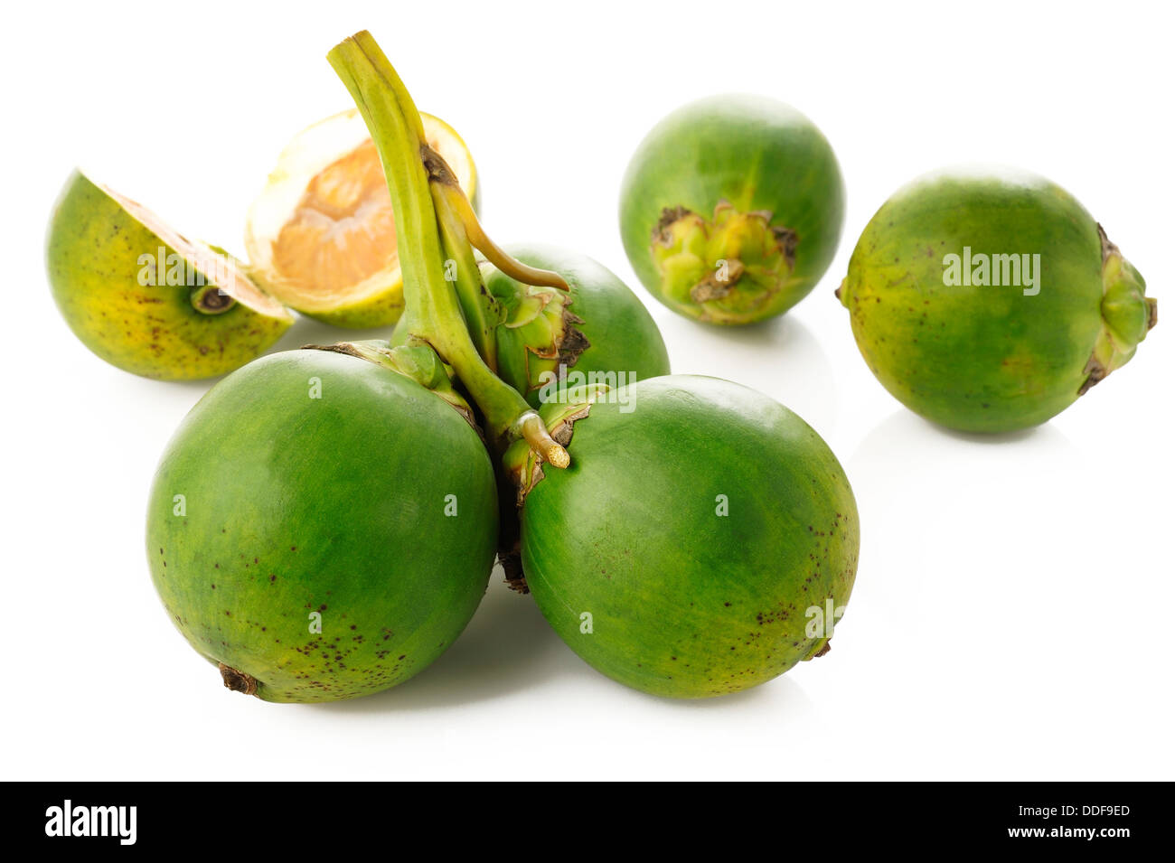 raw betel nut - Stock Image