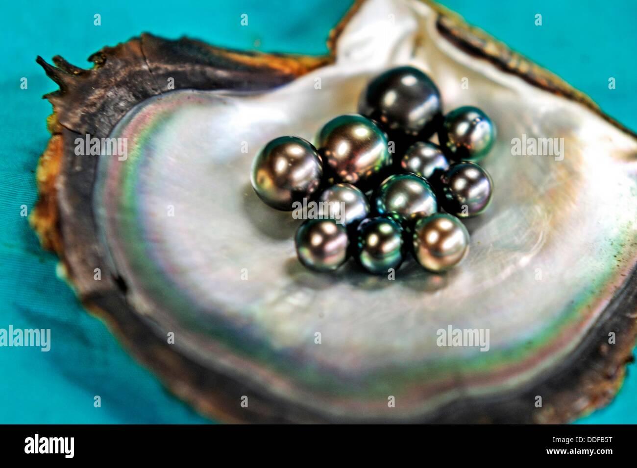 perle noire de tahaa