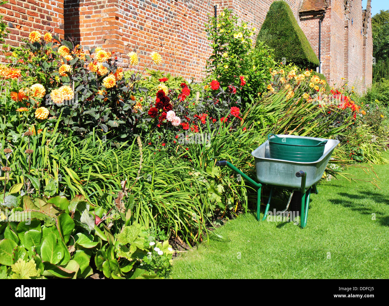 Wheelbarrow parked next to a colorful border of Summer Flowers in an English walled garden - Stock Image