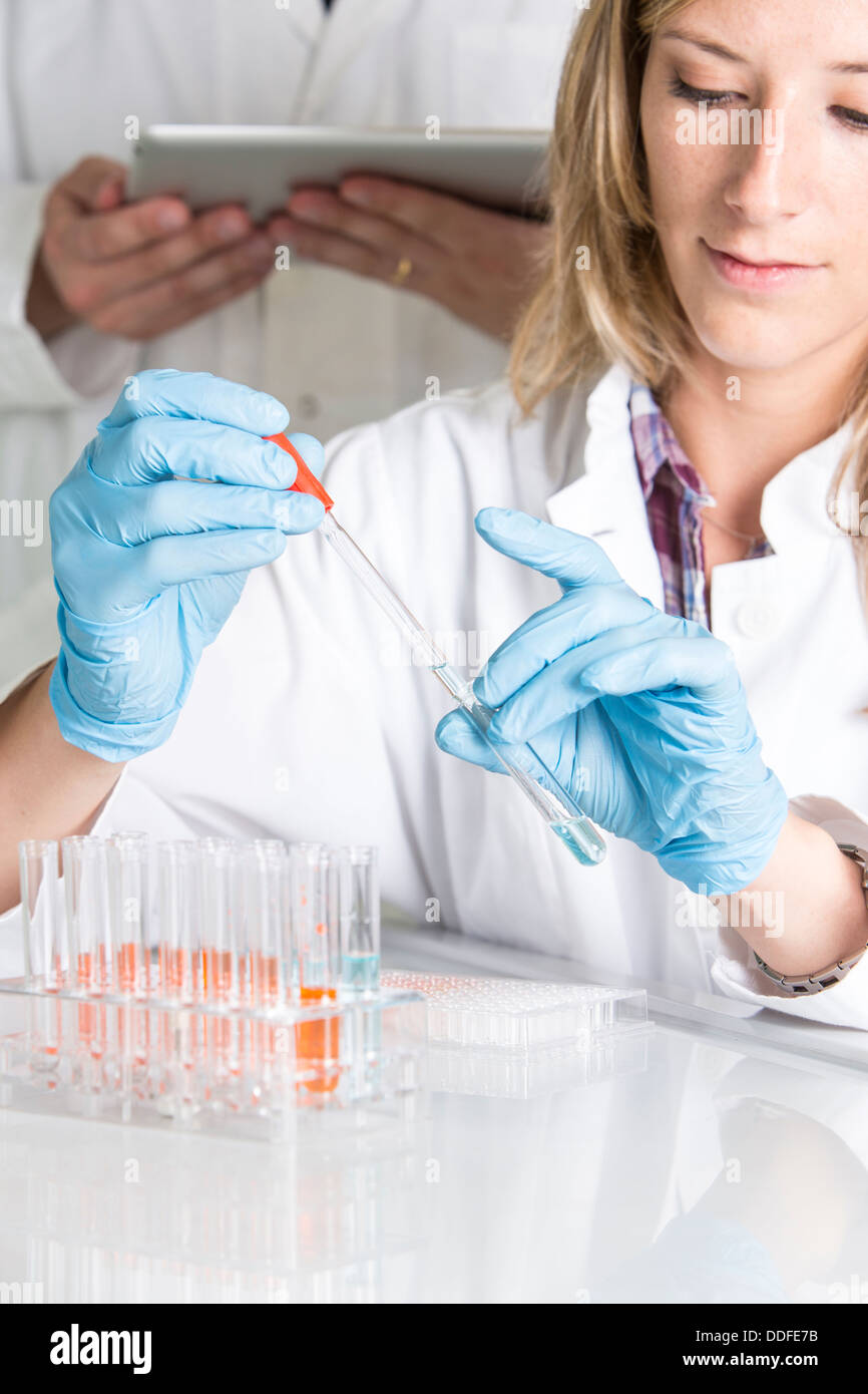 Scientists at the laboratory with chemicals and tablet computer - Stock Image