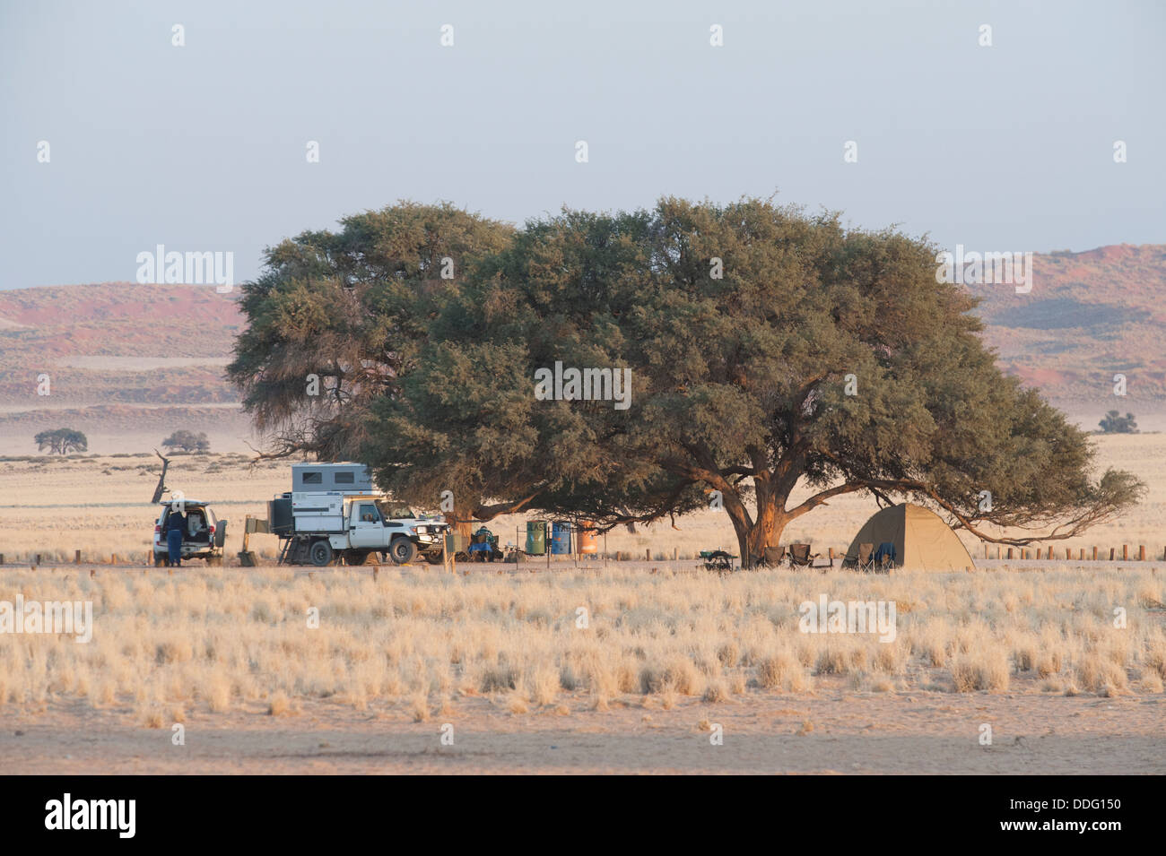 Camper vehicles and tent under trees, Sesriem campsite, Khomas region, Namibia - Stock Image